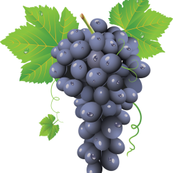 Grape-PNG-Image-768x823