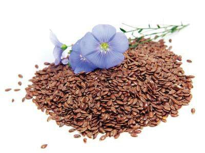семена4